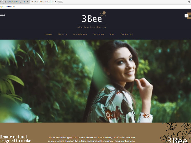 3Bee Shopify design - Nelson